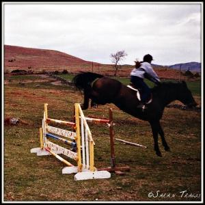 Molly jumping
